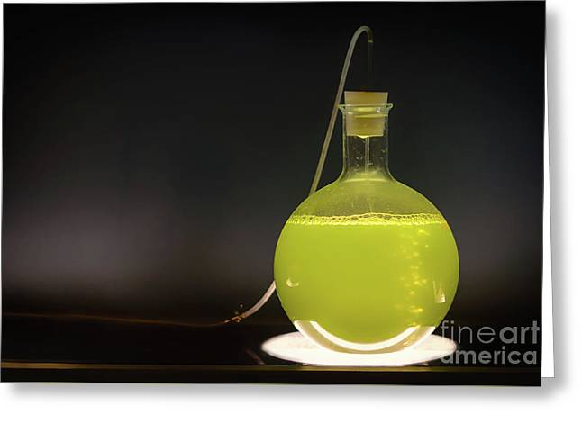Volumetric Flask With Green Liquid Chemical Experiment Greeting Card