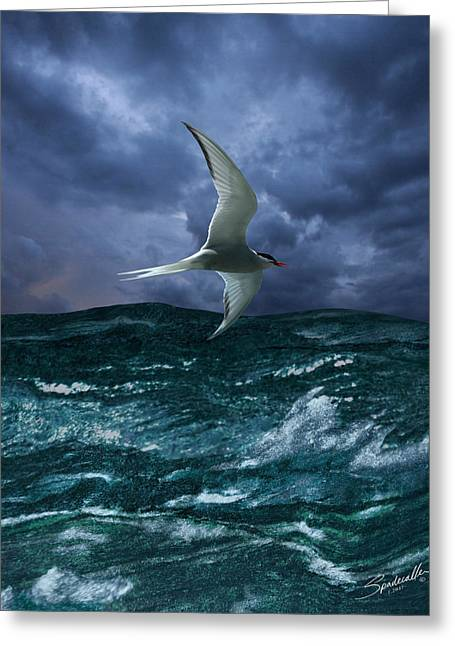 Voyage Of The Arctic Tern Greeting Card