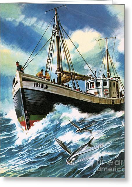 Voyage To The Spanish Main Greeting Card