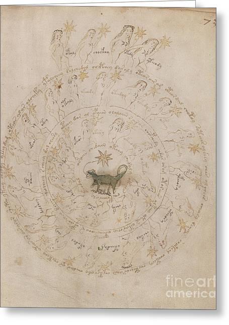 Voynich Manuscript Astro Scorpio Greeting Card
