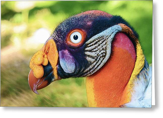 Greeting Card featuring the photograph Vulture by Artistic Panda
