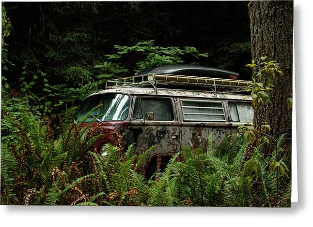 Vw Hides In The Woods Greeting Card