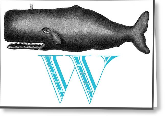 W Whale Greeting Card by Thomas Paul