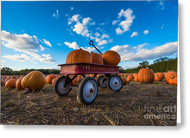 Wagon At The Pumpkin Patch Greeting Card