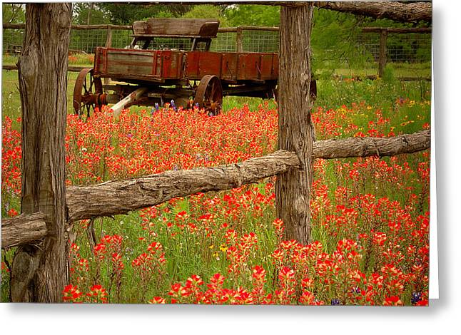 Award Winning Art Greeting Cards - Wagon in Paintbrush - Texas Wildflowers wagon fence landscape flowers Greeting Card by Jon Holiday
