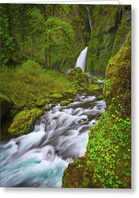 Greeting Card featuring the photograph Wahclella Falls by Darren White