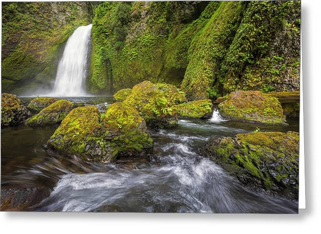 Wahclella Falls Greeting Card by David Gn