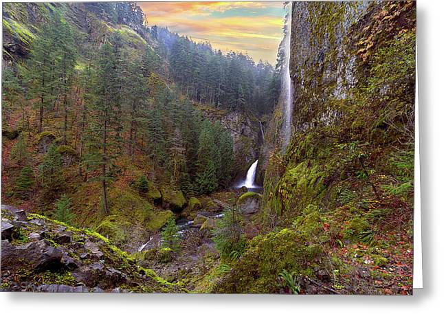 Wahclella Falls In Columbia River Gorge Greeting Card by David Gn