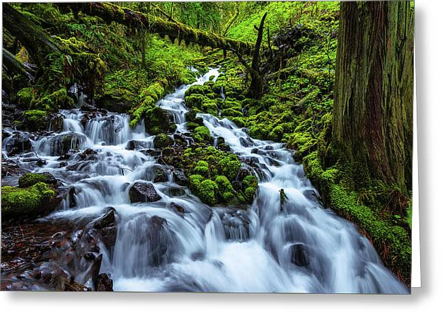 Wahkeena Greeting Card by Chad Dutson