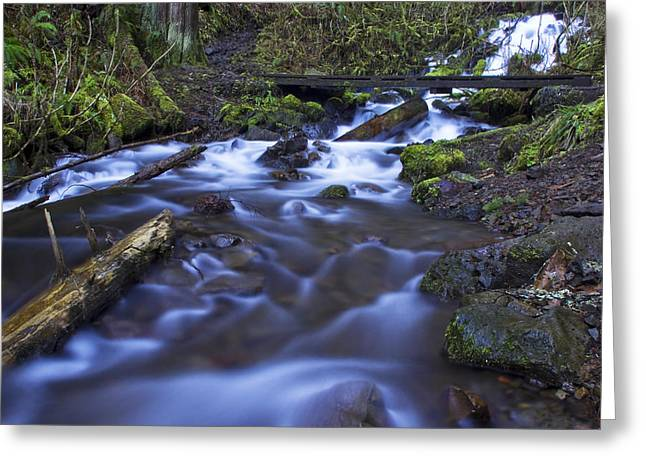 Wahkeena Creek Bridge # 5 Greeting Card
