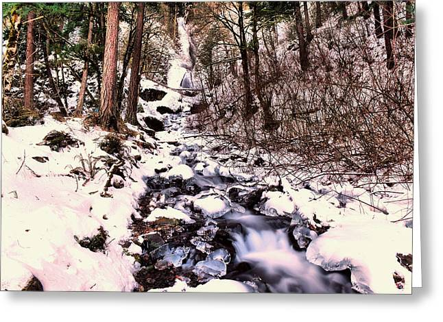 Greeting Card featuring the photograph Wahkeena Falls In Ice by Jeff Swan