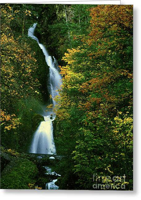Wahkeena Falls Waterfall Greeting Card