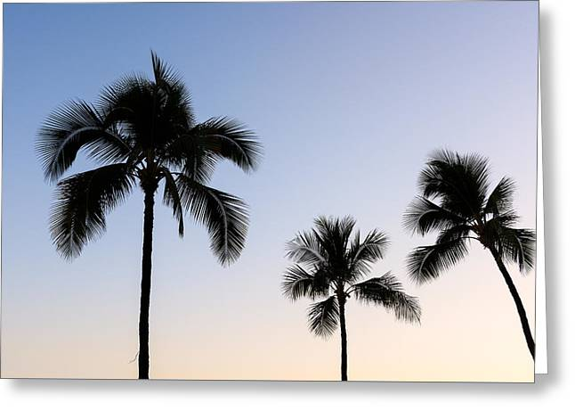 Waikiki Greeting Card by Doug Oglesby