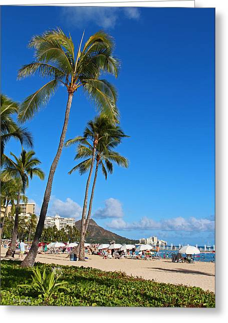 Kerri Ligatich Greeting Cards - Waikiki Greeting Card by Kerri Ligatich