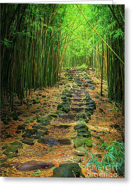 Waimoku Bamboo Forest #2 Greeting Card by Inge Johnsson