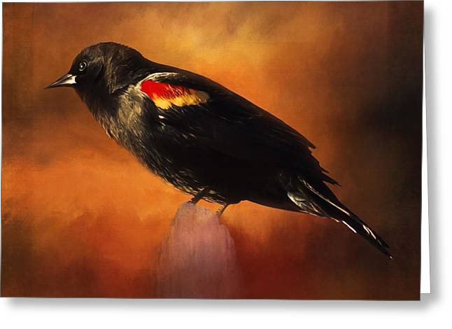Waiting - Bird Art Greeting Card