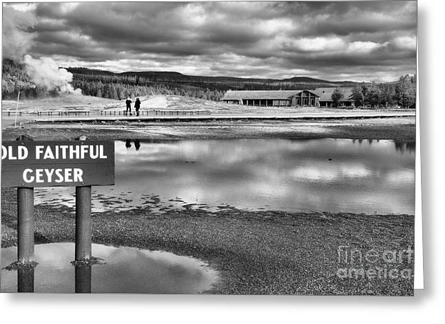 Waiting For Old Faithful Black And White Greeting Card by Adam Jewell