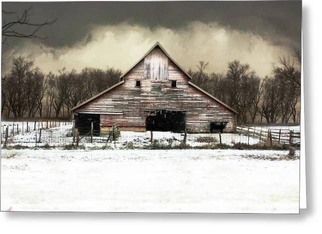 Waiting For The Storm To Pass Greeting Card by Julie Hamilton