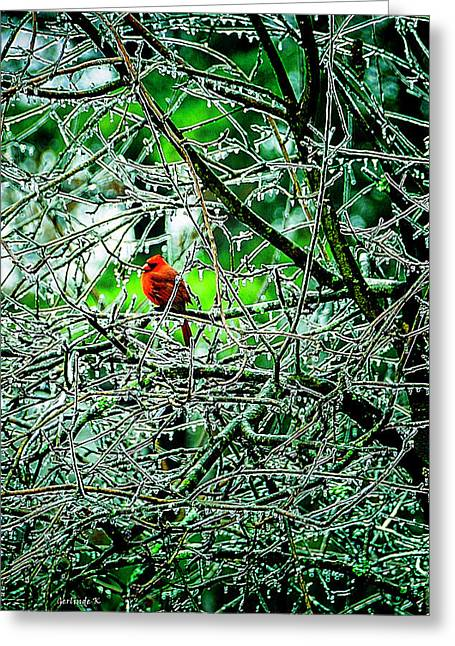 Waiting For The Thaw Greeting Card by Gerlinde Keating - Galleria GK Keating Associates Inc