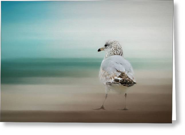Waiting For The Tide Greeting Card by Jai Johnson