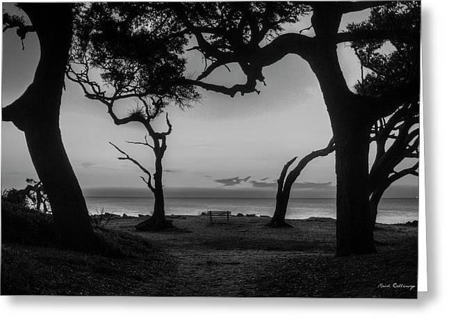 Waiting For You Driftwood Beach Jekyll Island Georgia Greeting Card by Reid Callaway