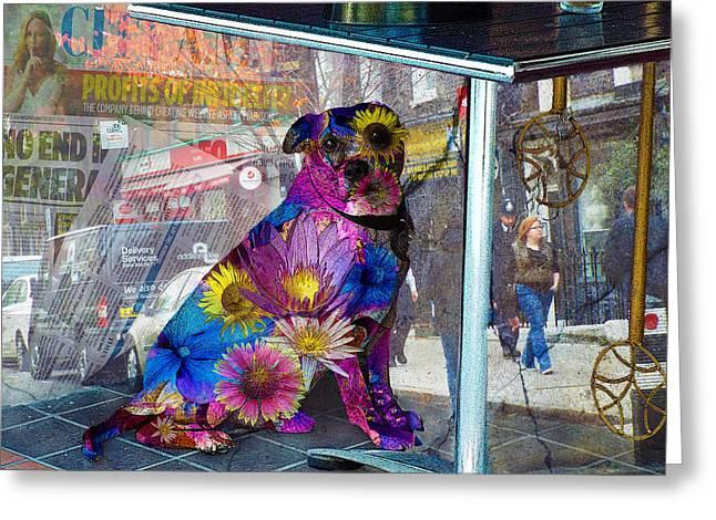 Waiting Greeting Card by Judi Saunders