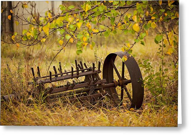 Waiting On My Other Wheel Greeting Card by Toni Hopper