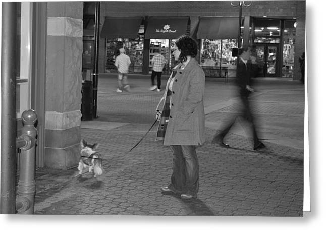 Waiting On The Dog Greeting Card by Luke Cain