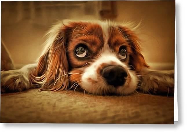 Waiting Pup Greeting Card
