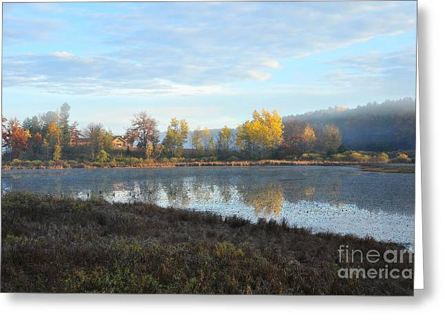 Waldeck Island Nature Preserve At Stoneledge Lake Greeting Card by Terri Gostola