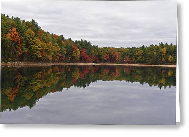 Walden Pond Fall Foliage Concord Ma Reflection Trees Greeting Card