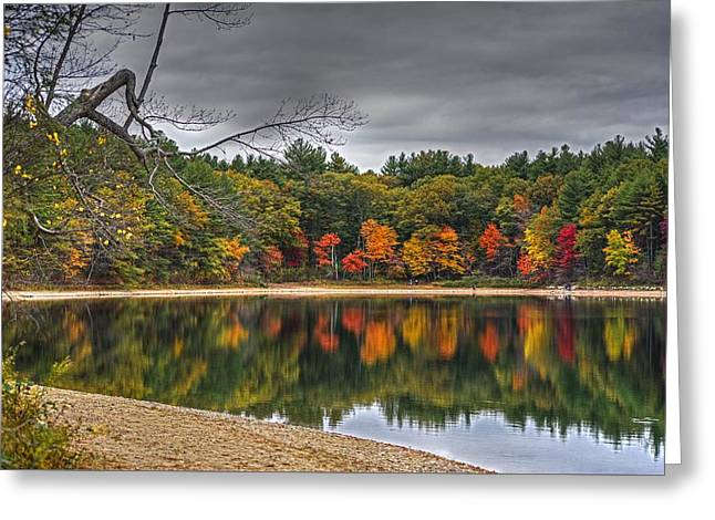 Walden Pond Fall Foliage Concord Ma Greeting Card by Toby McGuire