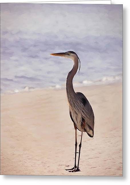 Walk Along The Beach Greeting Card by Kim Hojnacki