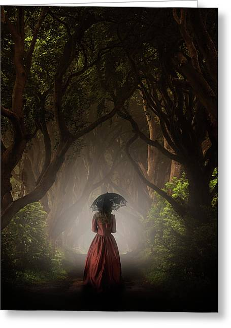 Walk In The Magic Forrest Greeting Card by Jaroslaw Blaminsky