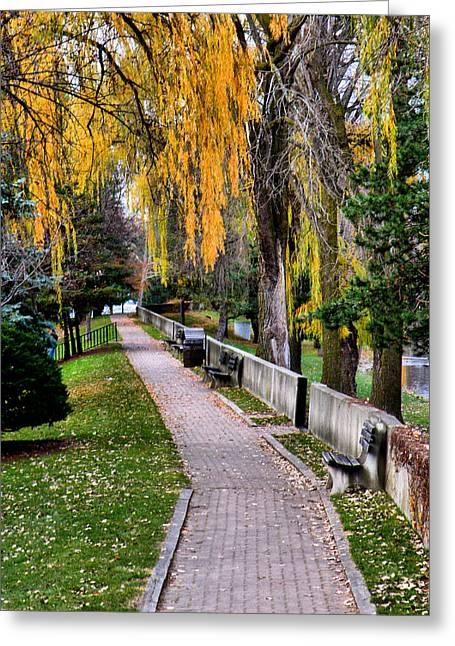 Walk In The Park Greeting Card by Scott Hovind