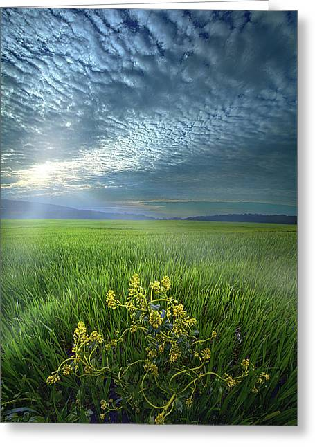 Walk In The Spirit Greeting Card by Phil Koch