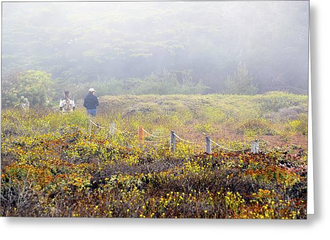 Walk With A Friend On A Foggy Day In Cambria By The Sea Greeting Card by Barbra Snyder