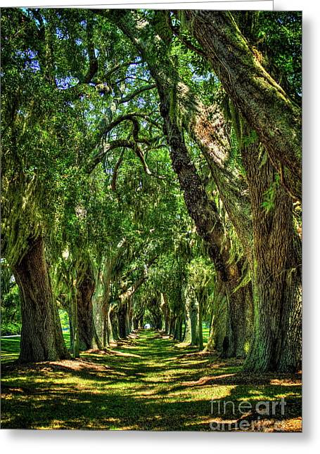 Greeting Card featuring the photograph Walk With Me Avenue Of Oaks St Simons Island Art by Reid Callaway
