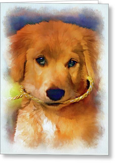 Walkies...pleeease - Paint 2 Greeting Card by Steve Harrington