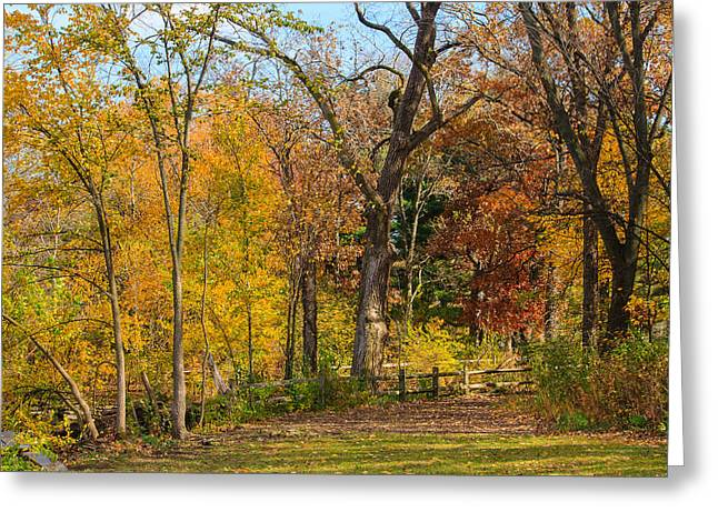 Walking At Herrick Lake Greeting Card by Joni Eskridge