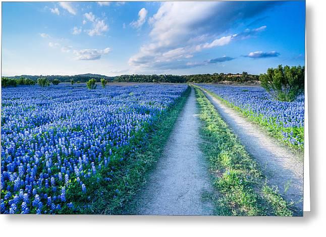 Walking In A Bluebonnet Field - Texas Greeting Card by Ellie Teramoto