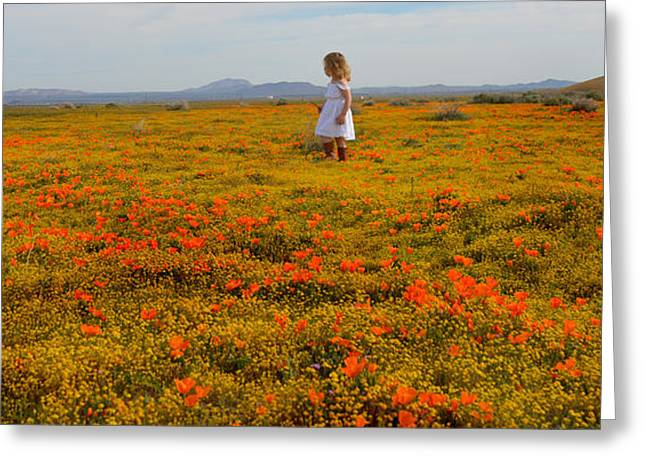 Walking In Poppies Greeting Card