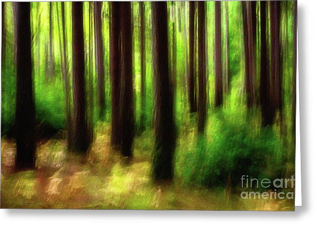 Walking In The Woods Greeting Card