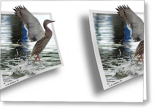 Walking On Water - Gently Cross Your Eyes And Focus On The Middle Image Greeting Card by Brian Wallace