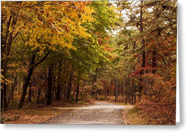 Walking Path In Fall Winding River Park New Jersey Greeting Card