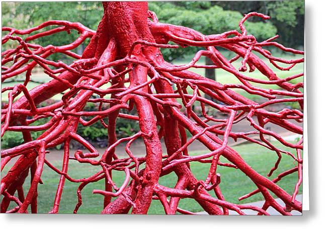 Walking Roots Sculpture Greeting Card by Gayle Miller