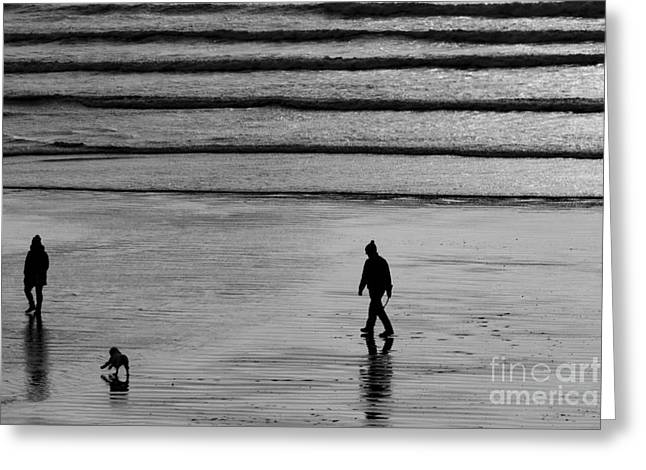 Greeting Card featuring the photograph Walking The Dog At Marazion by Brian Roscorla