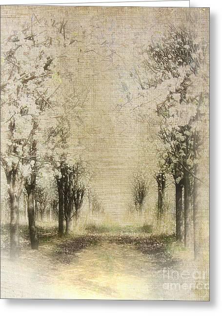 Walking Through A Dream IIi Greeting Card by Dan Carmichael