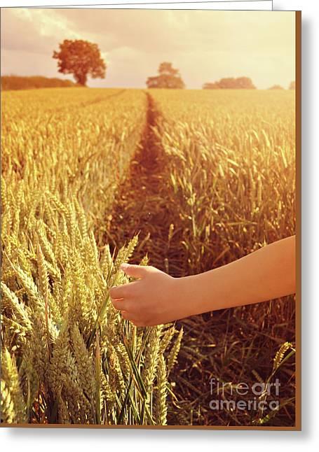 Greeting Card featuring the photograph Walking Through Wheat Field by Lyn Randle