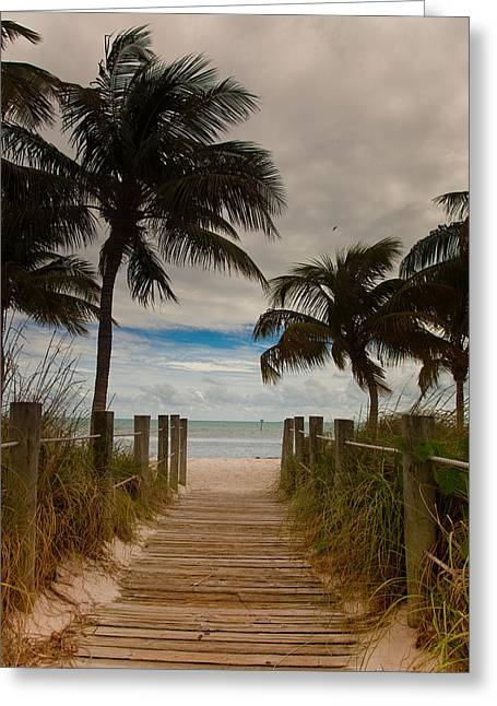 Walking To The Beach Greeting Card by Patrick  Flynn